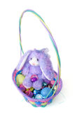 Bunny And Basket. Easter Bunny and Easter Basket Stock Images