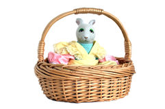 Bunny in a basket Stock Photography