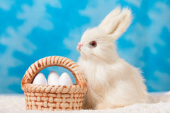 Bunny with basket of Easter eggs on a background of blue sky . Royalty Free Stock Photo