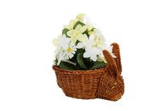 Bunny Basket Stock Image