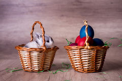 Bunny in a basket. Happy Easter stock image