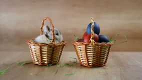 Bunny in a basket. Happy Easter! stock video footage