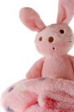 Bunny on a blanket. Royalty Free Stock Image