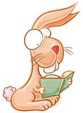 Bunny with book Royalty Free Stock Photography