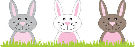 Bunny Border Stock Images