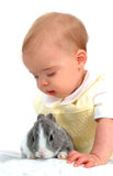 Bunny and Boy. Baby boy looking at gray bunny Royalty Free Stock Photo