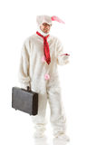 Bunny: Bunny Man Reads a Text Message Royalty Free Stock Photography