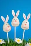 Bunny cake pops Stock Image