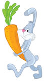 Bunny and carrot Royalty Free Stock Photo