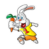 Bunny Carrot Stock Images