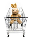Bunny in Cart royalty free stock image