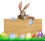 Bunny character pointing and Easter eggs Royalty Free Stock Photo