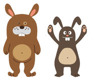 Bunny characters Royalty Free Stock Images