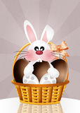 Bunny with chocolate eggs Stock Photo