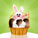 Bunny with chocolate eggs Stock Photography