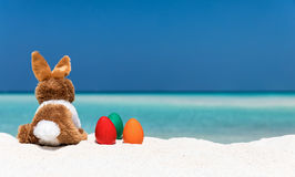 Bunny and colored easter eggs on a beach. Bunny and colored easter eggs on a tropical beach in the Maldives Stock Photography