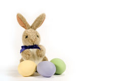 Bunny with Colored Eggs - horizontal Royalty Free Stock Photo