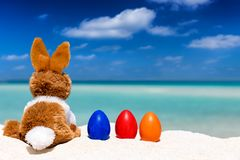 Bunny with colored eggs on a tropical beach. Easter holiday concept: bunny with colored eggs on a tropical beach Stock Images