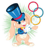 Bunny conjuror. Bunny conjuror shows the foci Stock Images