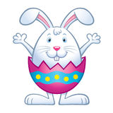 Bunny In Cracked easter Egg Shell Royalty Free Stock Photos