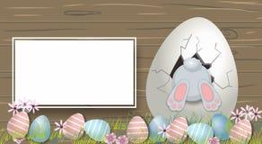 Bunny With Decorated Eggs Fondo de la primavera y de Pascua fotografía de archivo