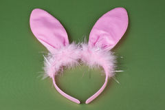 Bunny ears Royalty Free Stock Photos