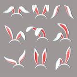 Bunny ears on hoop costume element rabbit or hare organ of perception. Costume element bunny ears rabbit headdress vector object decor halloween holiday or vector illustration
