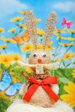 Bunny easter Royalty Free Stock Photography