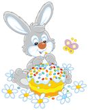 Bunny with an Easter cake. Easter rabbit with a colorfully decorated holiday pie among flowers, a vector illustration in a cartoon style Stock Image