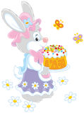 Bunny with an Easter cake Stock Photos