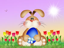 Bunny with Easter chocolate egg Stock Photography