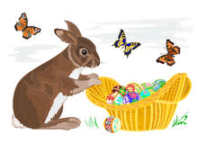 Bunny with Easter eggs in a basket Royalty Free Stock Image