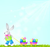 Bunny. Easter bunny with eggs on a spring background Royalty Free Stock Image