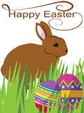 Bunny Easter. Vector of bunny rabbit finding Easter eggs Royalty Free Stock Photos