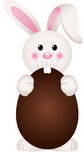 Bunny Eating Chocolate Easter Egg Photos stock