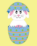 Bunny in Egg. Easter bunny rabbit in egg Royalty Free Stock Image