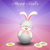 Bunny in egg for Happy Easter Royalty Free Stock Images