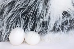 Bunny with eggs (easter) Royalty Free Stock Image