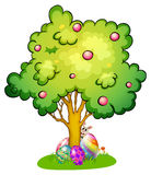 A bunny and eggs under the tree Stock Photography
