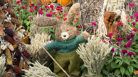 Bunny Farmer Scarecrow Guarding Harvest Royalty Free Stock Photography