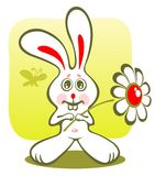 Bunny and flower Stock Photography