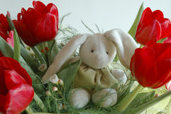 Bunny in flowers. Toy bunny in red tulips royalty free stock image