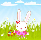 Bunny_girl Royalty Free Stock Image