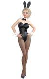 Bunny Girl Gambe lunghe della donna sexy in calzamaglia a rete nere Scarpe nere del costume da bagno Fotografie Stock