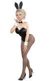 Bunny Girl Longues jambes de femme sexy dans des collants noirs de filet Chaussures noires de maillot de bain illustration libre de droits