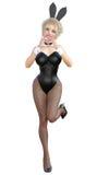 Bunny Girl Longues jambes de femme sexy dans des collants noirs de filet Chaussures noires de maillot de bain Images libres de droits