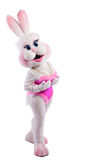 Bunny girl mascot costume take a breast Stock Photo