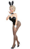Bunny Girl Pés longos da mulher 'sexy' em calças justas pretas da rede de pesca Sapatas pretas do roupa de banho Imagem de Stock Royalty Free