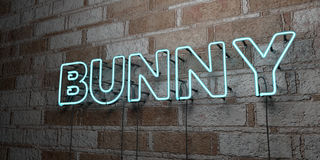 BUNNY - Glowing Neon Sign on stonework wall - 3D rendered royalty free stock illustration. Can be used for online banner ads and direct mailers Stock Photography