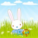Bunny_grass Royalty Free Stock Photos